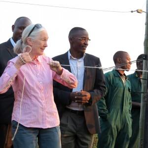 Jane Goodall auf Ngamba Island