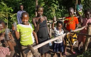 Baumpflanzung in Uganda