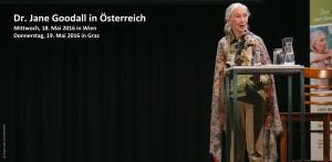 Jane Goodall in Österreich